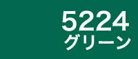 カラー見本 5224グリーン