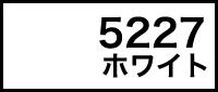 カラー見本 5227ホワイト